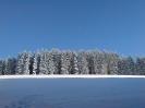 Bevkov vrh 4.1. 2009
