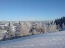 Bevkov vrh_28
